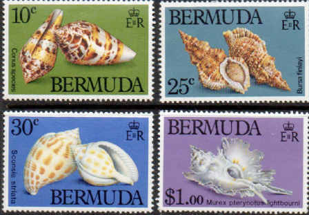 1982 Bermuda Shells postage stamps