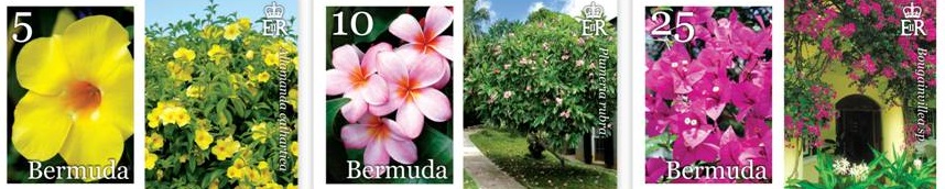 2014 Bermuda Flowers postage stamps