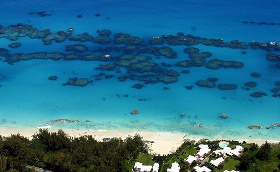 Bermuda reefs off a beach