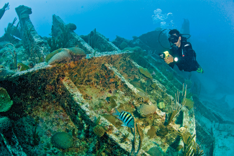 Top 10 scuba diving sites in france