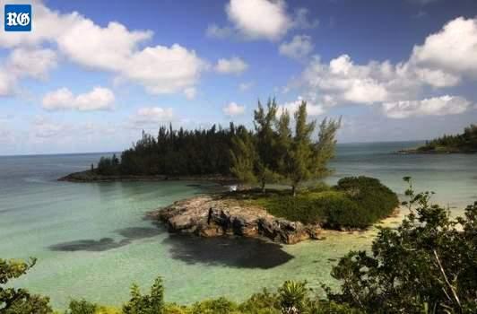 shark island law of the order blogspot
