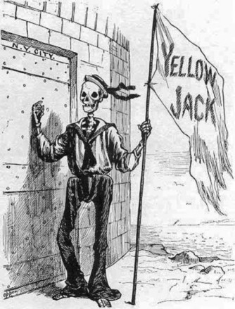 Yellow Jack disease cartoon