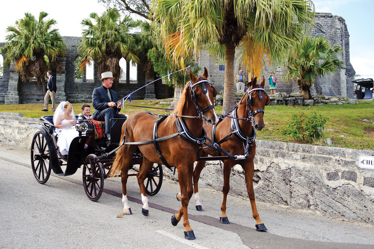 marriage in Bermuda by horse and carriage