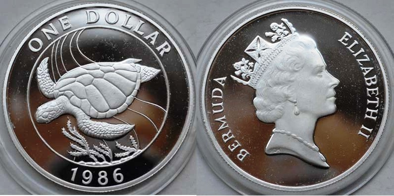 1986 Turtle coin