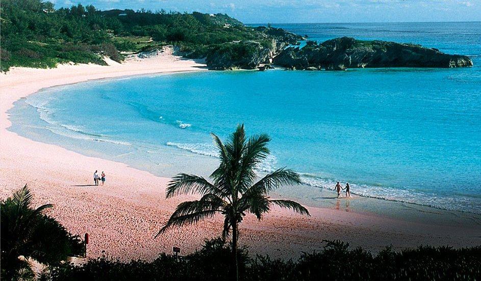 Bermuda Pink Beach 2