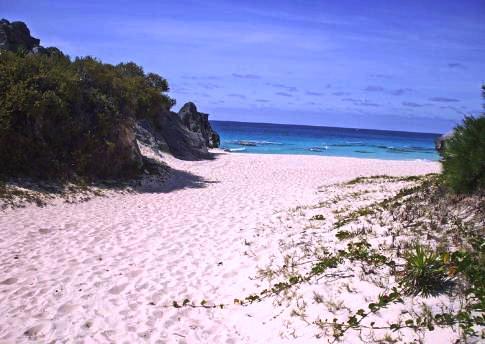 Chaplin Bay Bermuda 2017